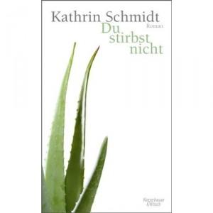 SchmidtStirbst